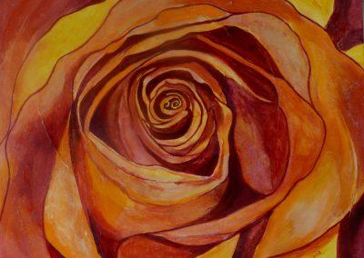 Rose_!
